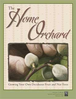 The Home Orchad