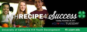 Giving Tuesday ~ Recipe For Success