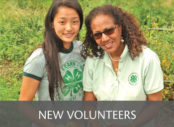 New Volunteers