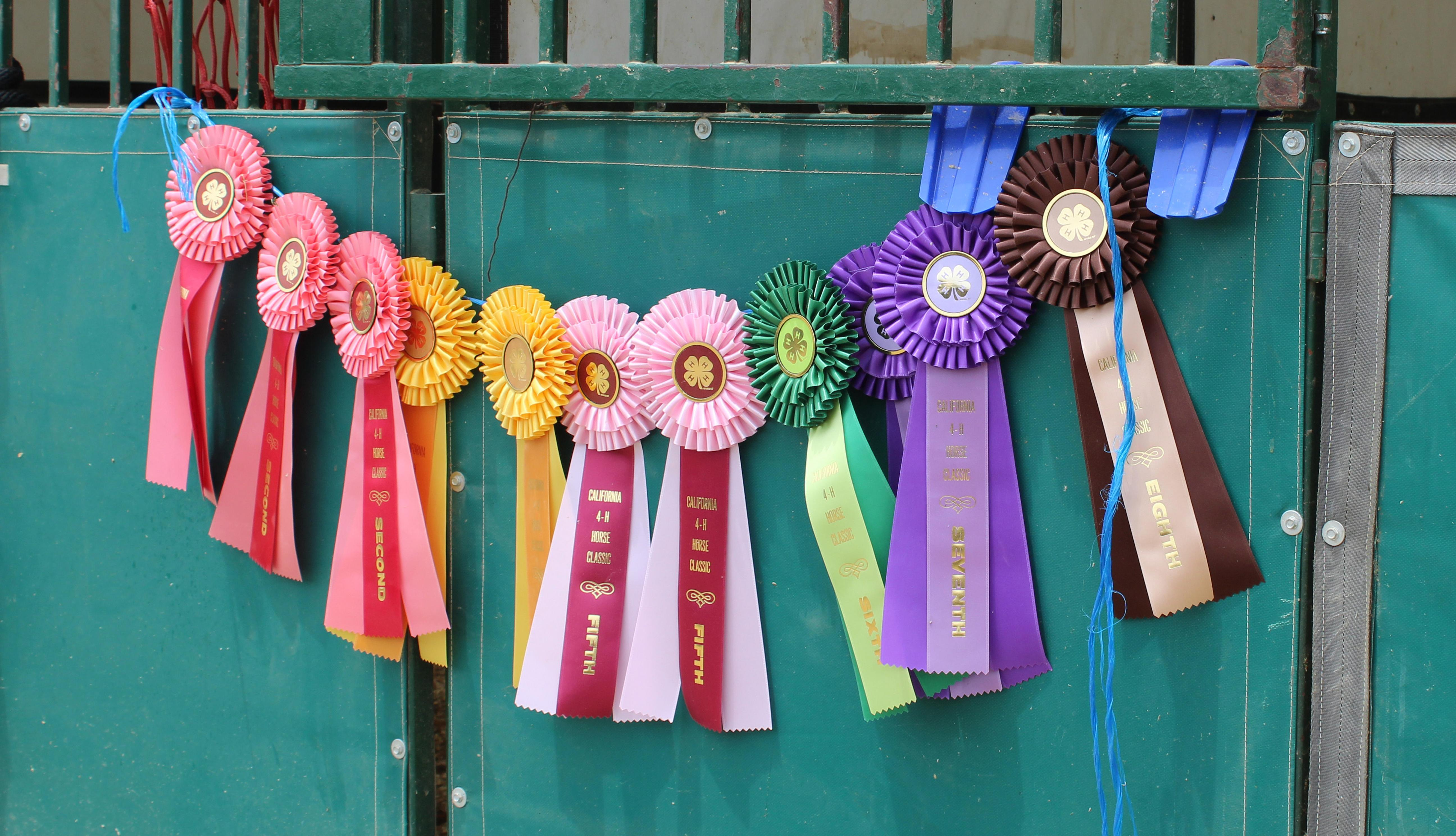 Award ribbons