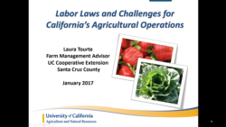 9 minute vido on Labor Laws and Challenges