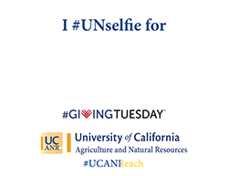I #UNselfie for