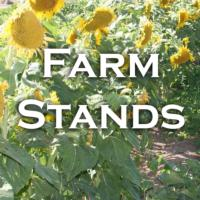 Farm Stands Icon New