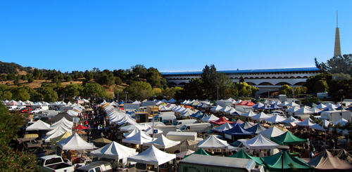 Sunday Civic Center Market Tents_cropped