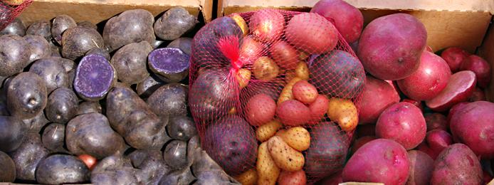 Consumer Deamnd_potatoes