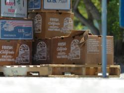 Farm boxes at a farmers market