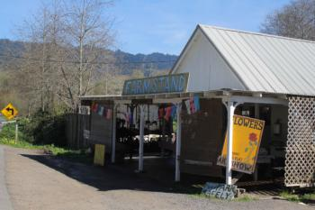 Gospel Flat Farm in Bolinas