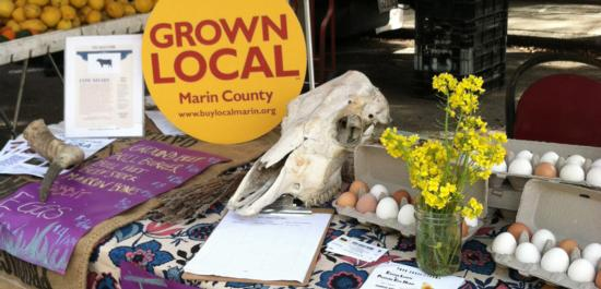 Grown Local_farmers mkt table