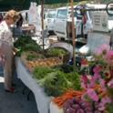 Marin Market