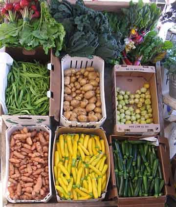 Vegetables from Fresh Run Farm