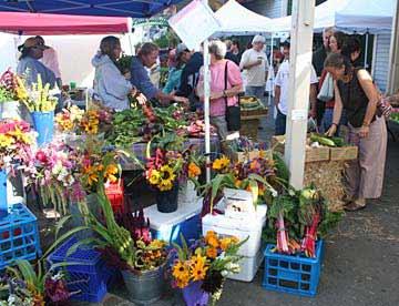 Point Reyes farmers' market