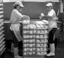 Cowgirl Creamery cheesemakers