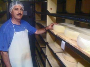 Cheesemaking 2