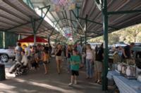Davis Farmer's Market in Central Park