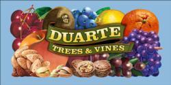 Duarte Trees and Vines