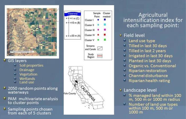 Yolo landscape map