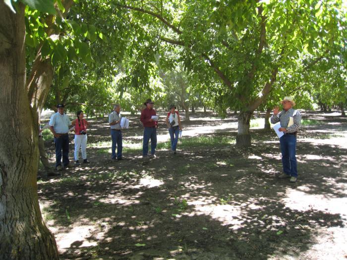 Bob Beede talking Farm Advisor Tour Kings County June 2007