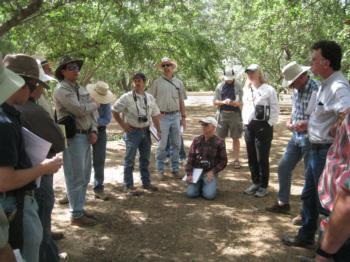 Almond farm advisor tour