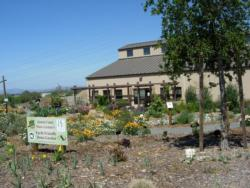 Earth Friendly Demo Garden in Livermore