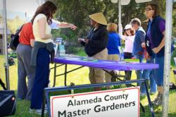 A Master Gardener Plant Doctor Booth at a Community Event