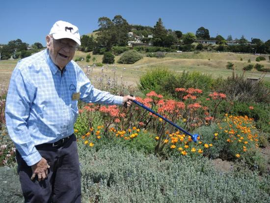Harvey Rogers in his name-sake garden in Tiburon. Sage, lavender, poppies, and aloe are a few of his drought-tolerant plant selections