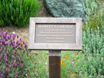 Four organizations support Harvey's Demonstration Garden