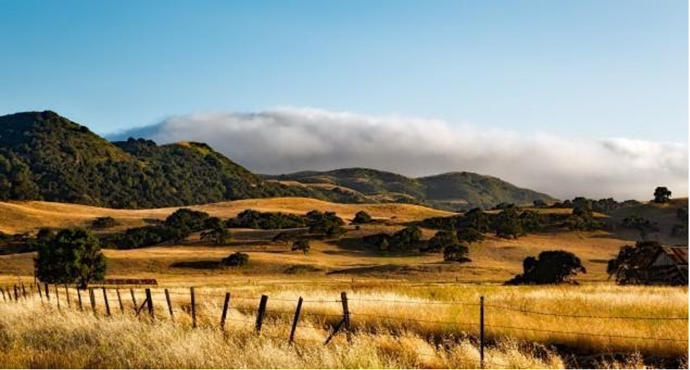 Dry summer hills and fog, typical of our Mediterranean climate. Photo: pxhere.com