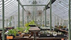 Falkirk greenhouse 1