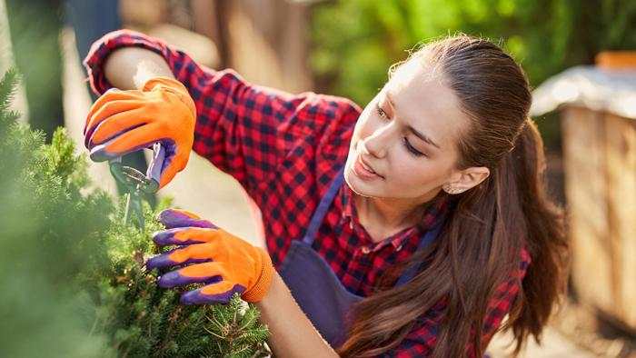 girl-gardener-dressed-in-apron-is-pruning-plants-i-ELWDNF2
