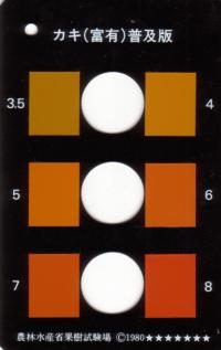 persimmon_color_chart