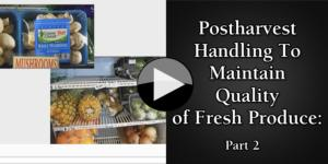 Postharvest Handling To Maintain Quality of Fresh Produce Part 2