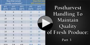 Postharvest Handling To Maintain Quality of Fresh Produce Part 3