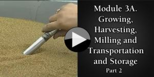 Module 3A. Growing, Harvesting, Milling and Transportation part2