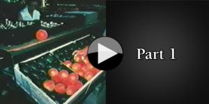 Small-scale postharvest handling practices for horticultural crops. Spanish part1