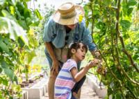 Horticultura_Gardening