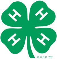 4H clover - color