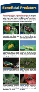 Beneficials card