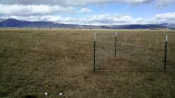 Irrigated Pasture exclosure and soil moisture monitoring probes (white circles in bottom left of image)