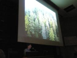 Steve Sillett, Humboldt State University, gives his perspective of Redwood forest canopies from 15 years of climbing the Redwoods.