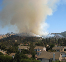 Griffith Park fire aug08