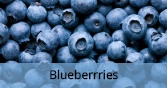 blueberries_Final