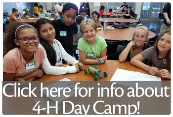 Click here for info about 4-H Day Camps!