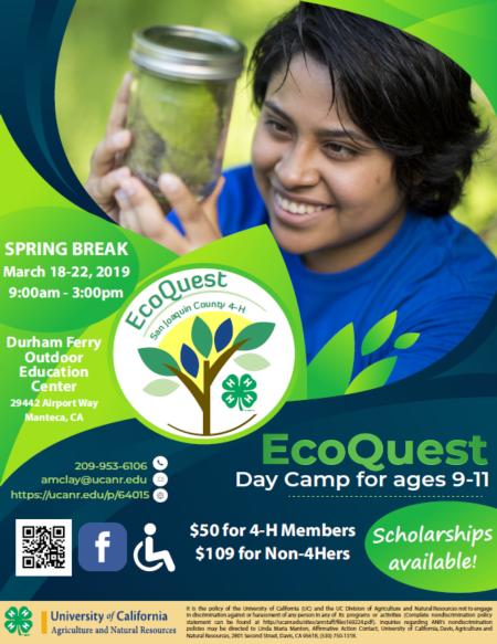 Click here to download a PDF of the EcoQuest Day Camp flyer!