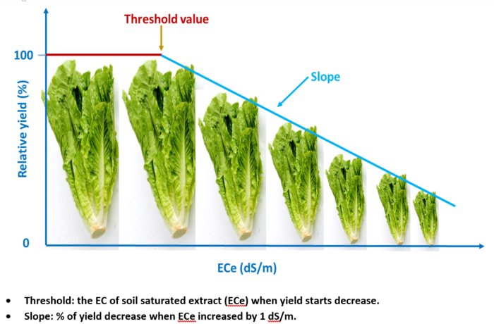 Crop salinity tolerance and yield function - Salinity Management