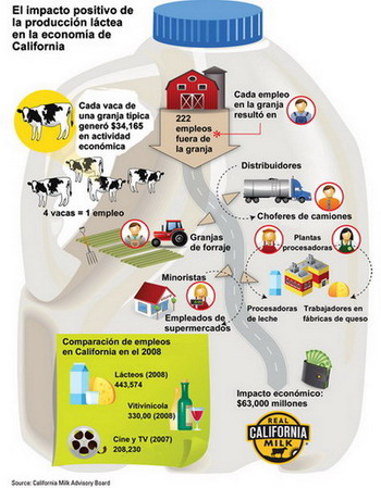 Dairy_InfoGraph