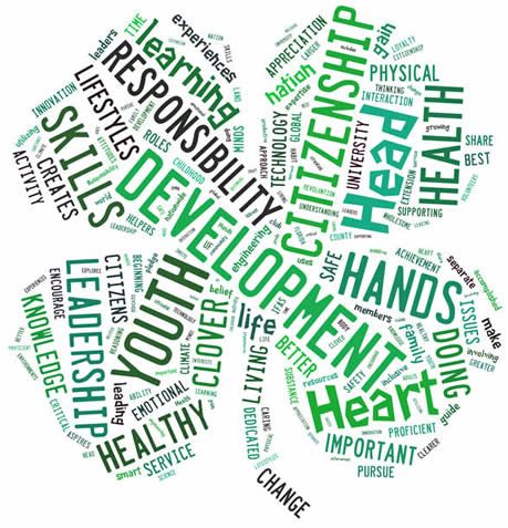 4-H Glossary - Imperial County