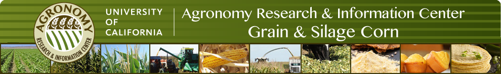 University of California Grain & Silage Corn
