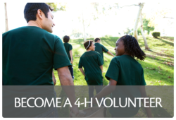 Adult volunteers are a key component of the 4-H program.