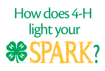 How does 4-H light your spark