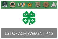 link to Achievement Pins list